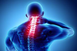 Orthopedic Spine Practice